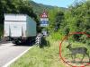 Segnaletica attraversamento animali