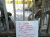 crudeltà animali