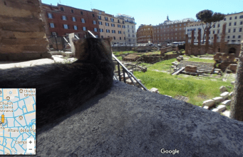 gatti di roma
