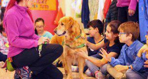 cane sostegno scuola