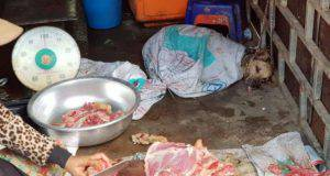 commercio carne cane