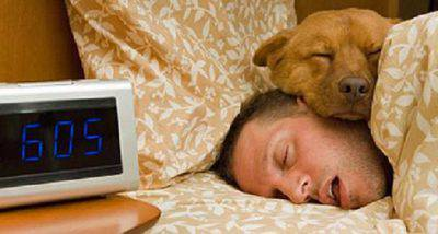 dormire con animali
