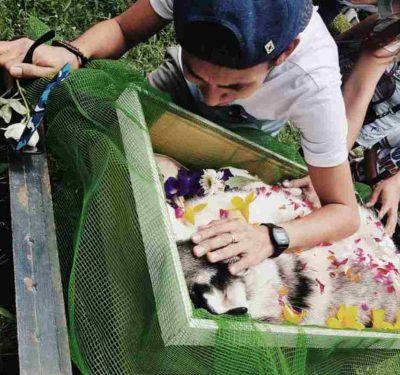 lutto morte cane