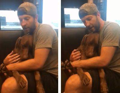 amore per il cane