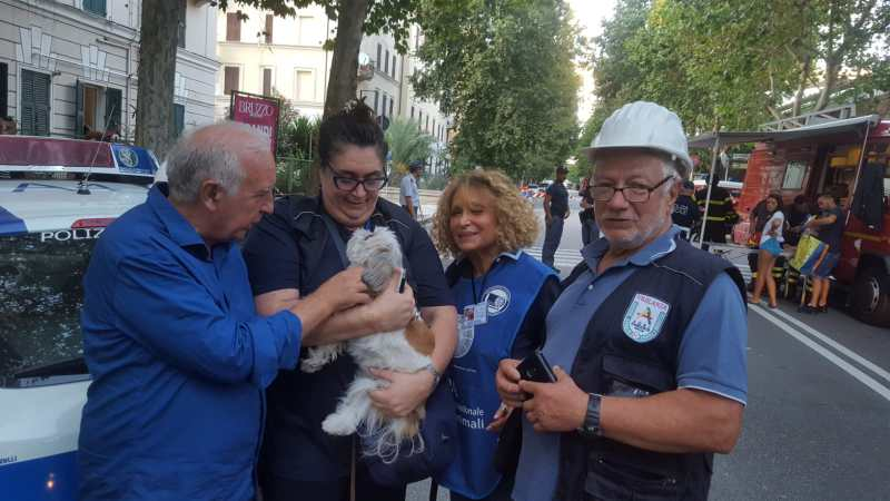 Volontari soccorso animali ponte Morandi