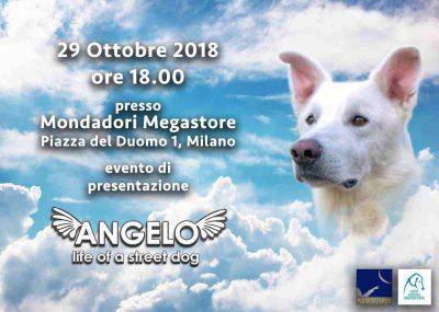 angelo cane ucciso