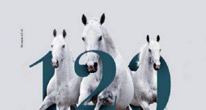 fiera cavalli