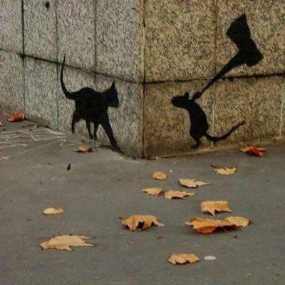 gatto predatore topi