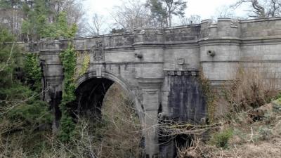 ponte cani suicida
