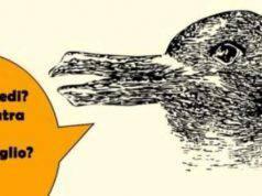 Test Anatra o coniglio?
