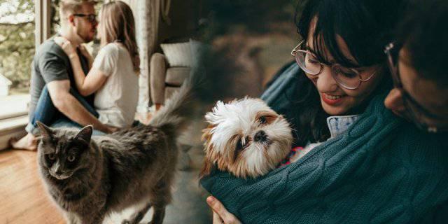 Animali e relazione di coppia