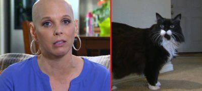 animali scoprono tumori uomo