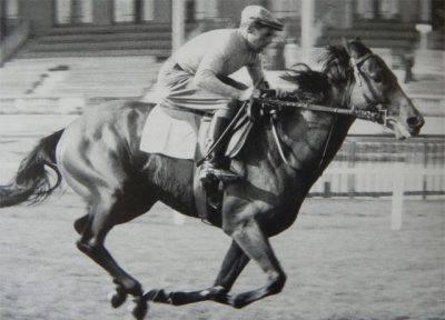 cavalli da corsa
