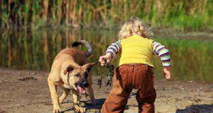 cane paura bambini