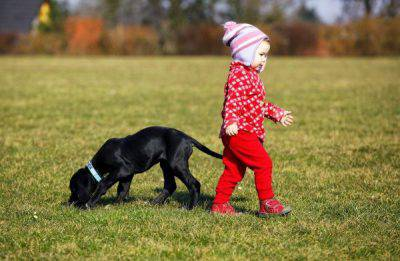 cane paura dei bambini