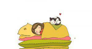 gatto nel lettone