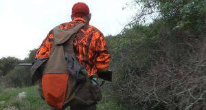 cacciatore aggredito lupi