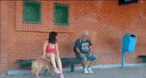 abbandona cane