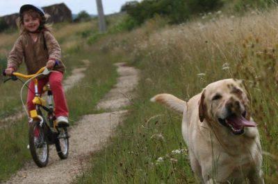 bambini passeggiata cane epidemia