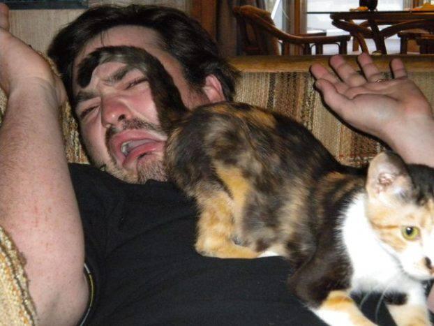 Gatto che mostra il proprio sedere al proprietario