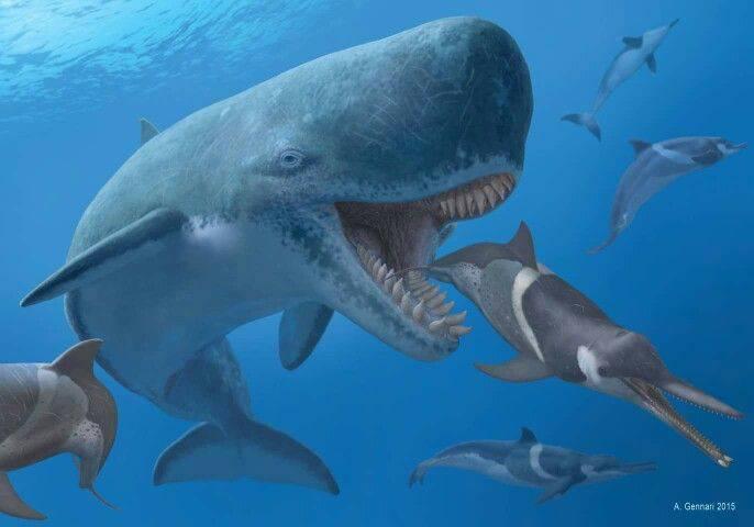 animali marini preistorici