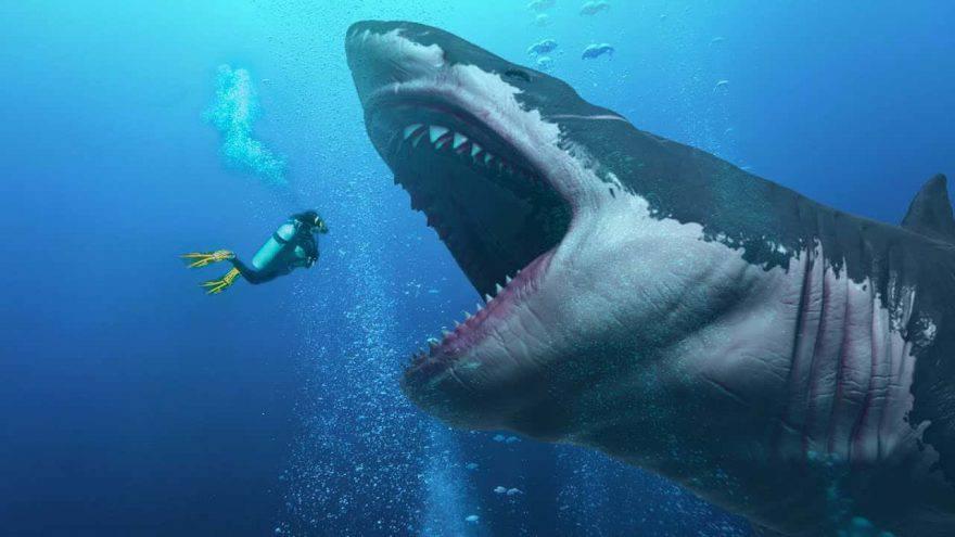 squalo preistorico