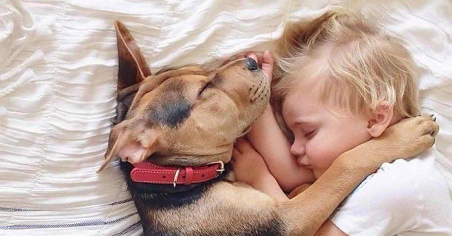 cane bambini