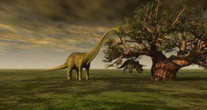 elenco dinosauri erbivori