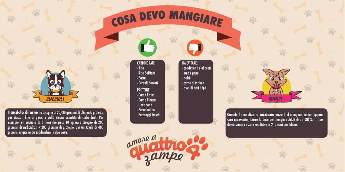 Infografica mangiare Cane