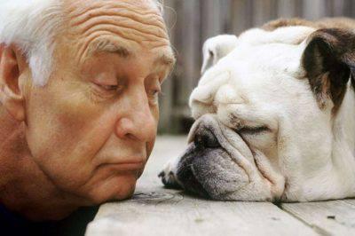 Cani riconoscono malattie
