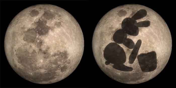Coniglio e luna