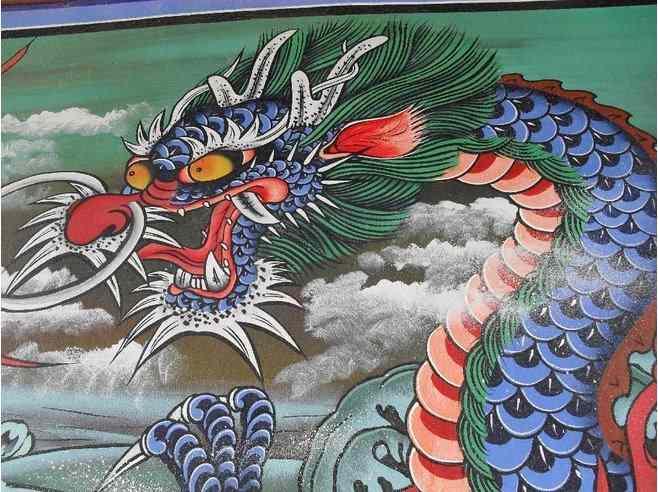 Drago coreano