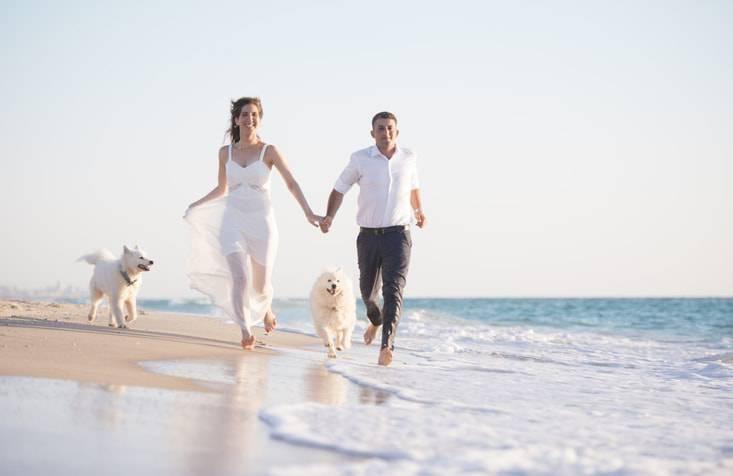viaggio di nozze con il cane