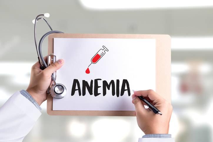 anemia nel cane