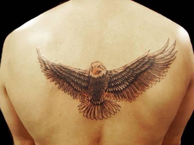 tatuaggio aquila