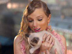 Taylor Swift gatti