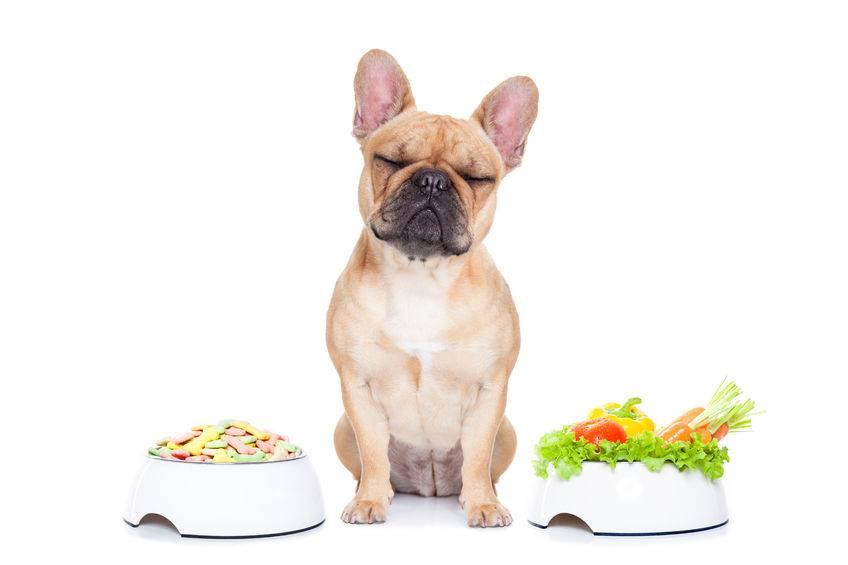 ricetta verdure natale 2019 cani