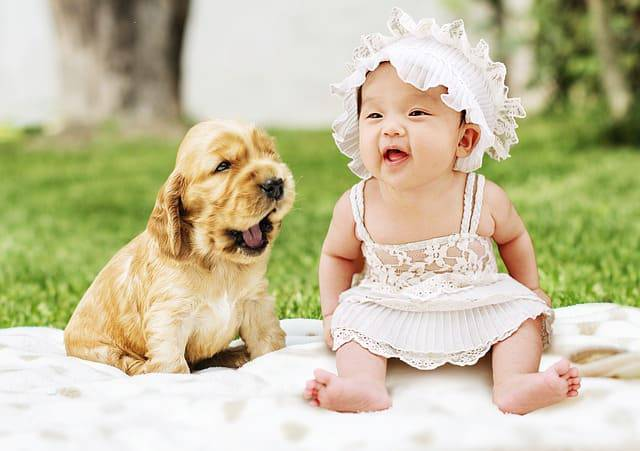cane neonati bambini
