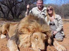 caccia trofeo leoni