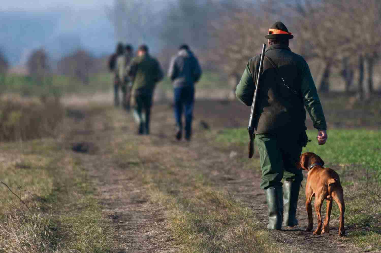preapertura caccia 2019