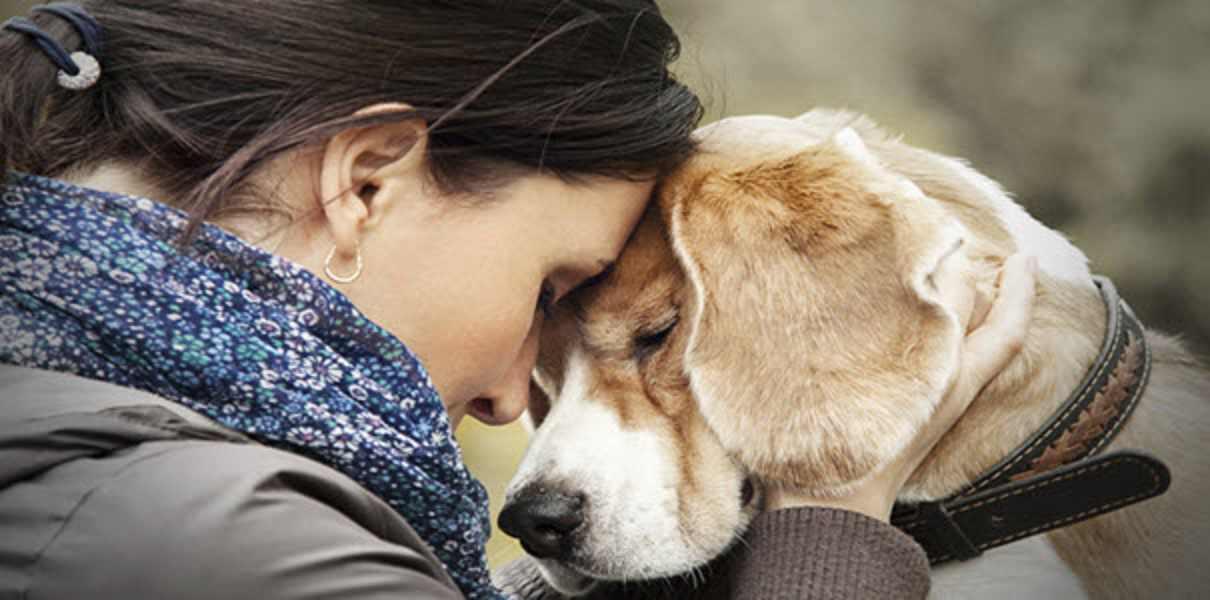 olfatto cane infezione uomo