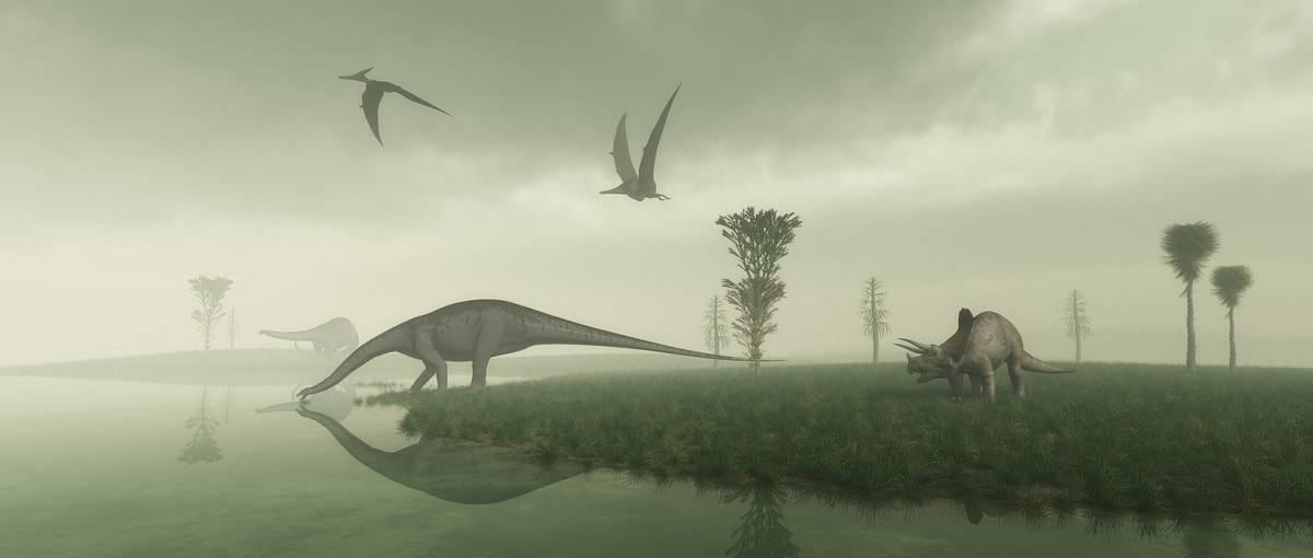 dormivano dinosauri