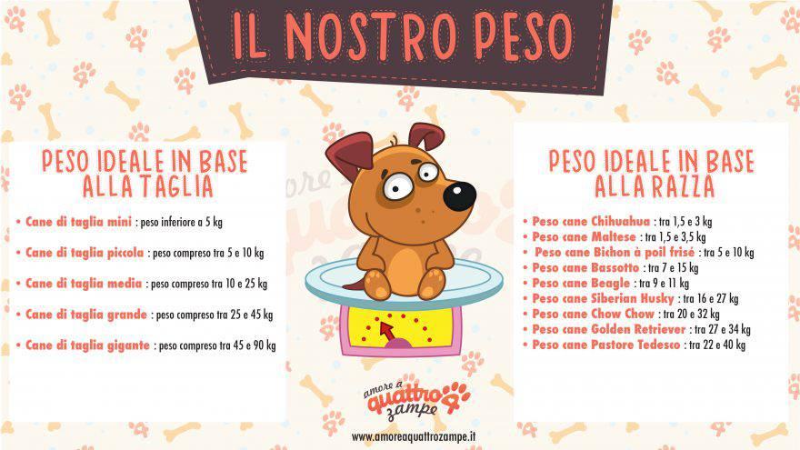 infografica peso ideale cane