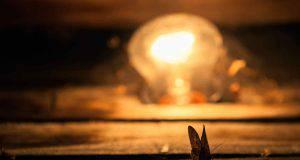 Le falene e la luce