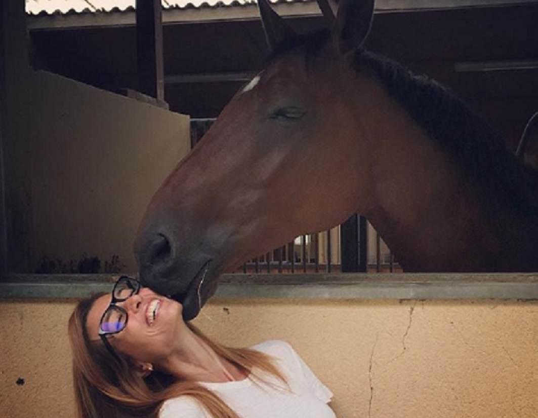 mantovan cavallo
