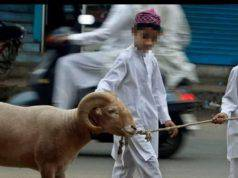 sacrifici animali