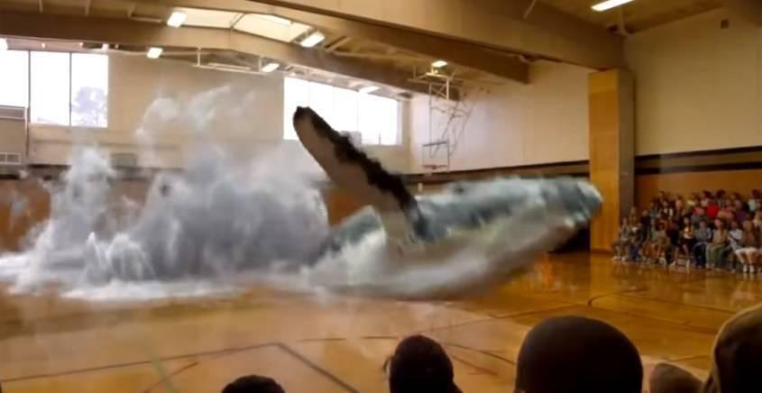 balene virtuali