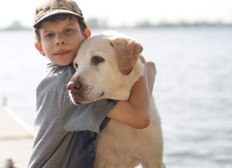 cani per bambini autistici