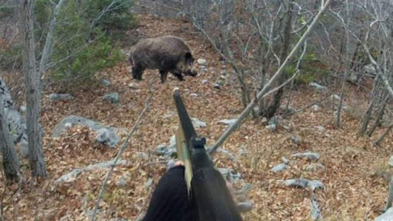 caccia segnalazioni