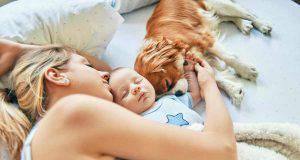 cani e neonati: come favorire la convivenza (foto iStock)